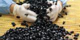 小豆島のおいしい甘納豆「極み黒豆」
